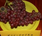 Vynuogės ir vynai